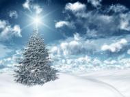 3D圣诞节雪景图片