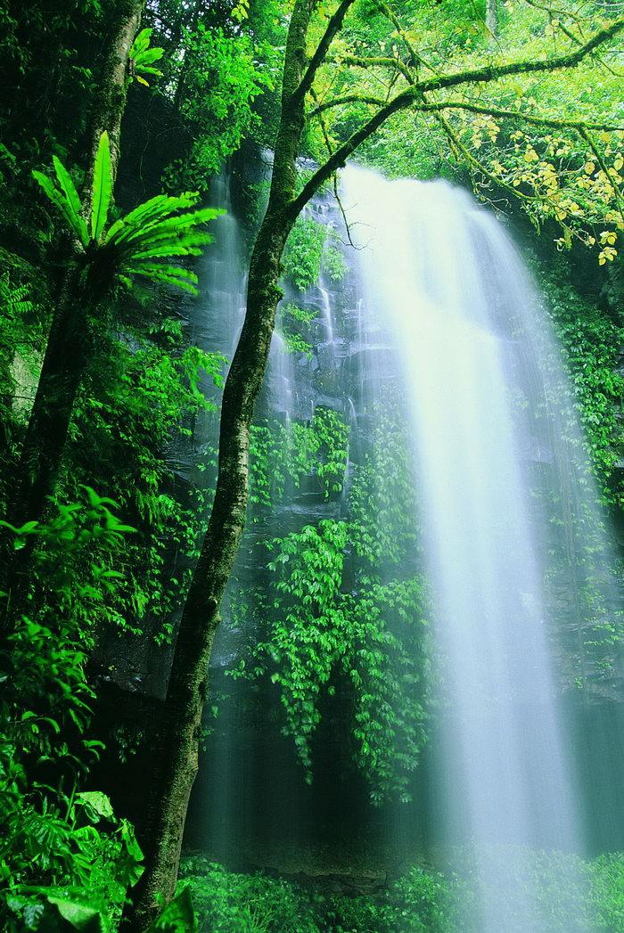 高山瀑布图片,高山瀑布,瀑布摄影风景图,瀑布,风景,2950x2094像素