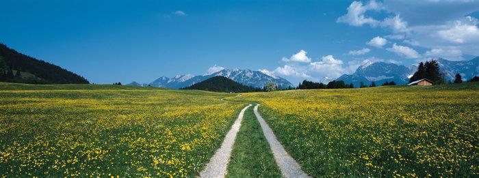 德国田野风光图片,德国田野风光,德国雪山,德国风景,德国名胜,国外