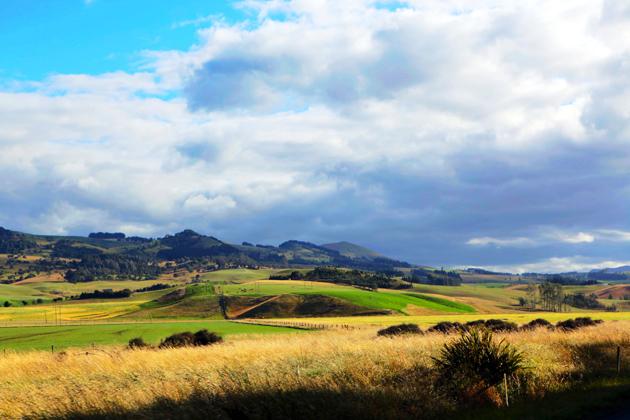 麦田图片,风景图片,风景图片,麦田,草地,山坡,云层,植物