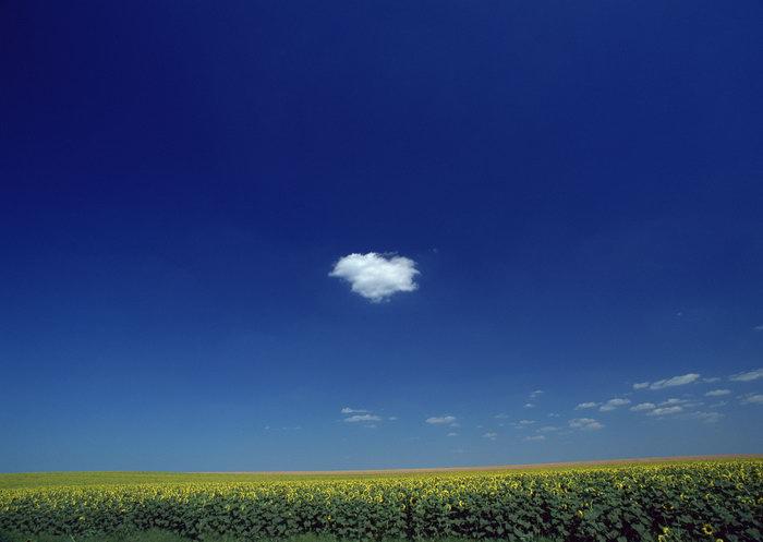 蓝天白云草地天空美景图片