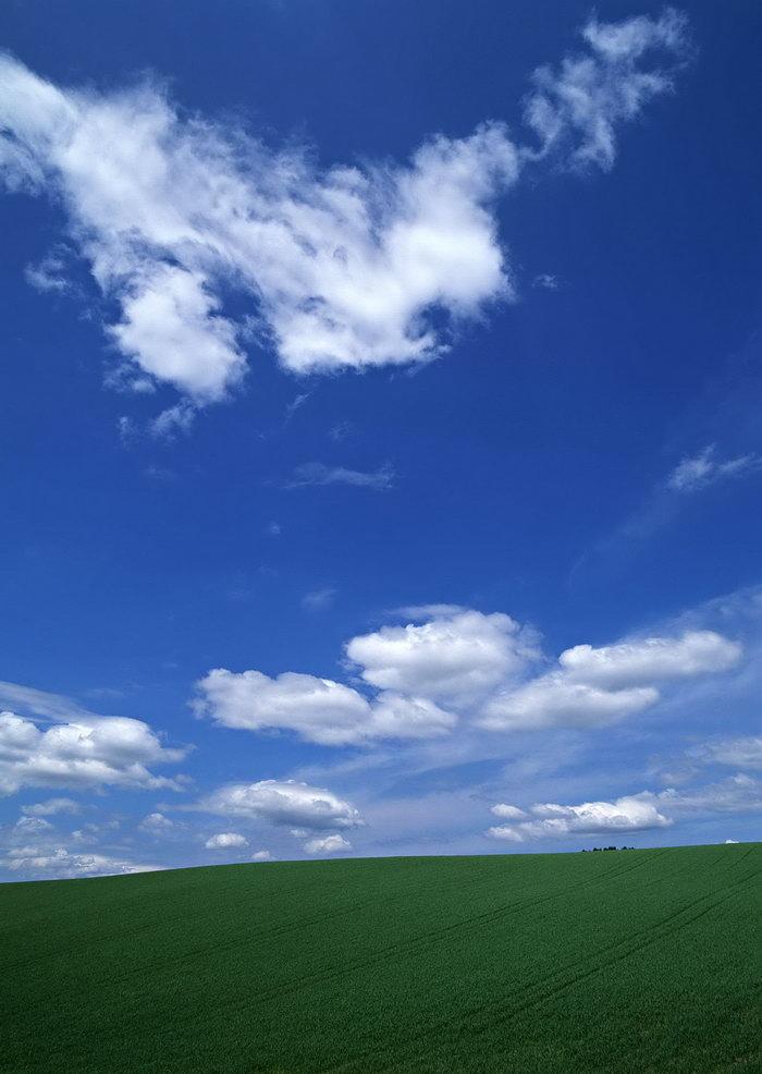 蓝天白云草地天空美景图片-素彩图片大全