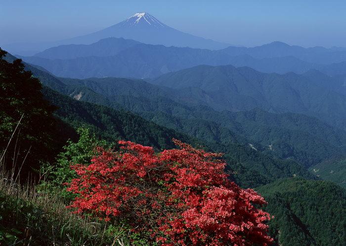 眺望富士山图片,眺望富士山景观,雪山风景,山水,摄影,风景,2950x2094