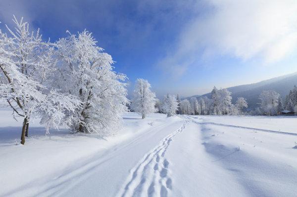 冬季雪景雪花5-素彩图片大全