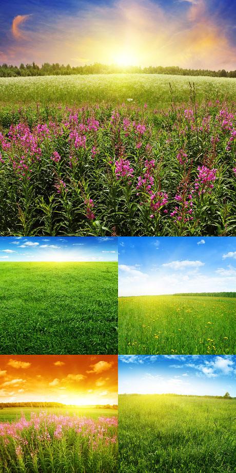 唯美田园风光图片,唯美,田园,风景,风光,秋天,夏天,田野,天空,光芒