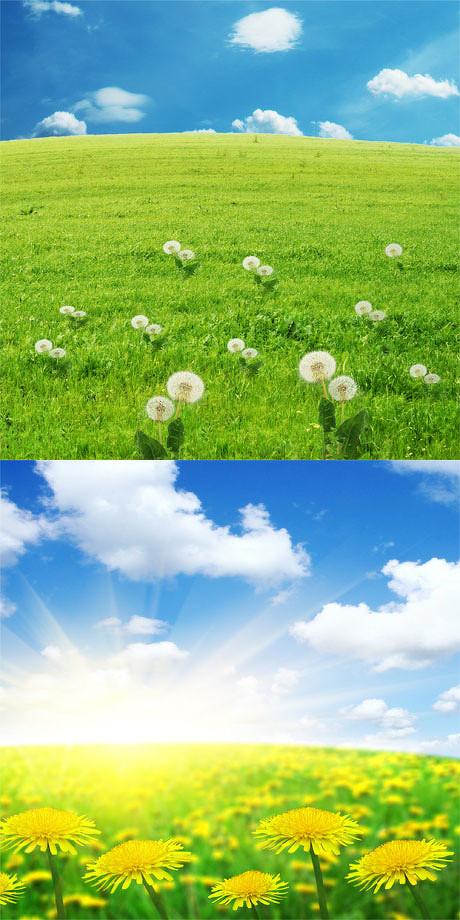蓝天绿地阳光风景图片