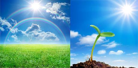 明媚阳光自然风景图片,壁纸,绿色,植物,阳光,自然,绿草,蓝天,其他