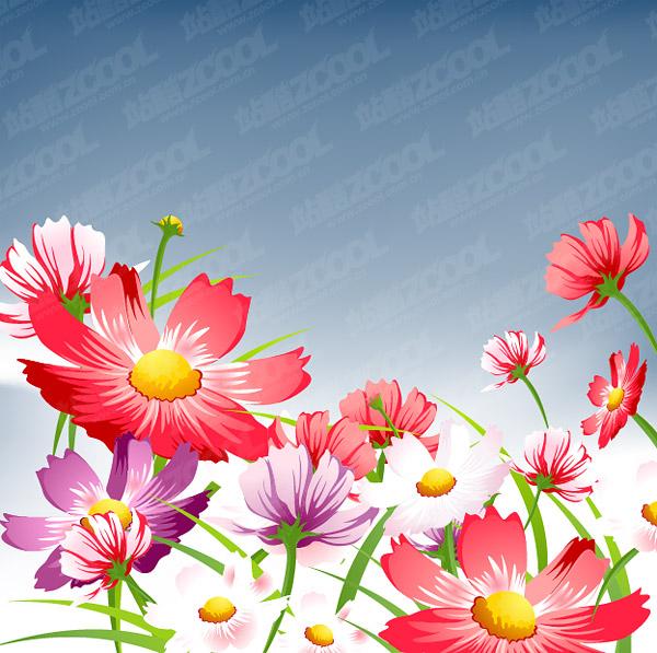 漂亮的花朵矢量图-素彩图片大全