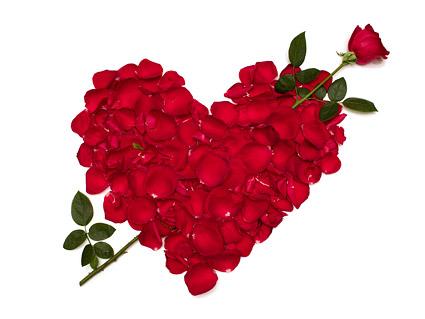 玫瑰花瓣组成的心形图片
