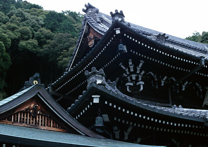 古代屋顶建筑古建筑
