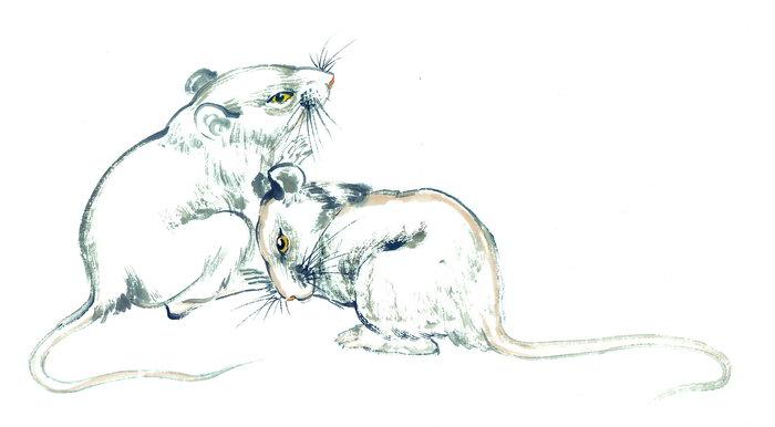 水墨画老鼠图片-素彩图片大全