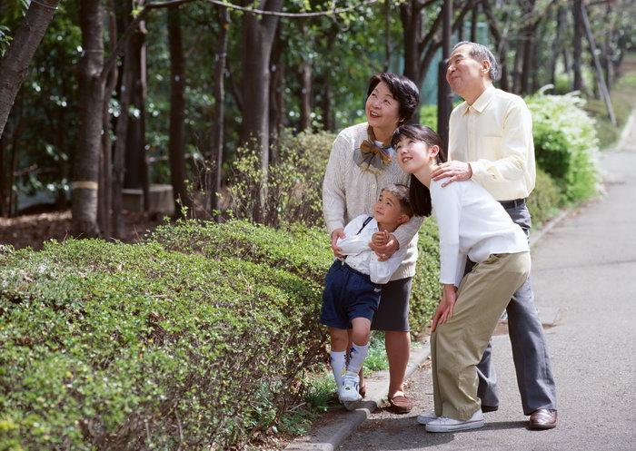一家老小看风景图片,一家老小看风景,人物,摄影,人物写真,2950x2094