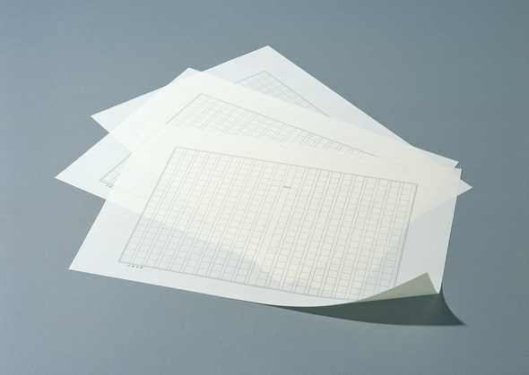 白纸照片头像大全