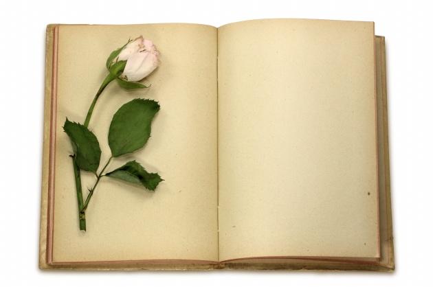 古典书本图片图片