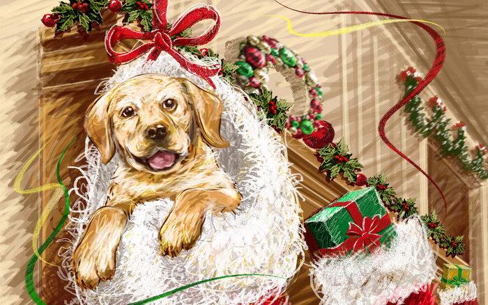 手绘圣诞节图片-素彩图片大全