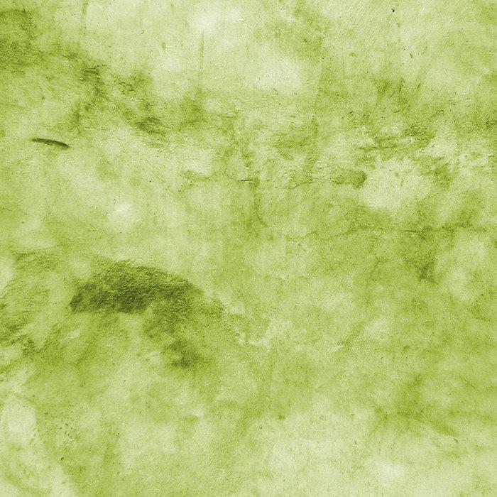 浅绿背景图片-素彩图片大全