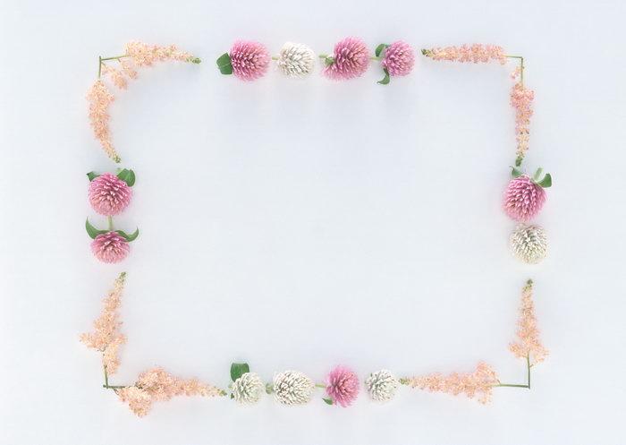 花卉藤条边框图片-素彩图片大全