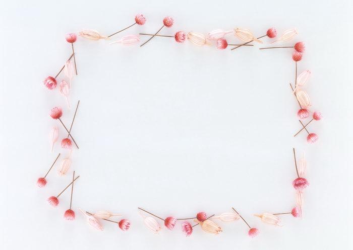 粉色鲜花边框图片