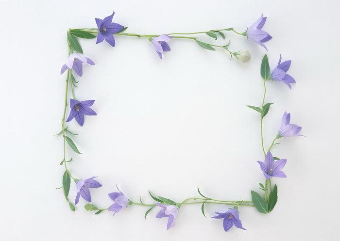 ppt点缀素材花朵