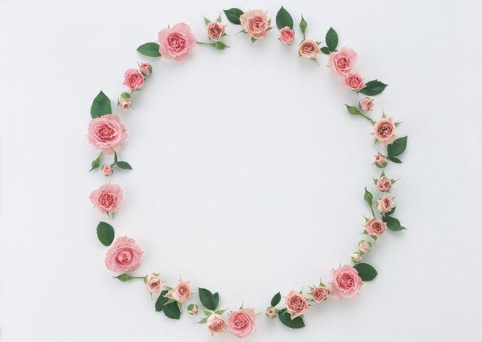粉色花朵圆形边框图片-素彩图片大全