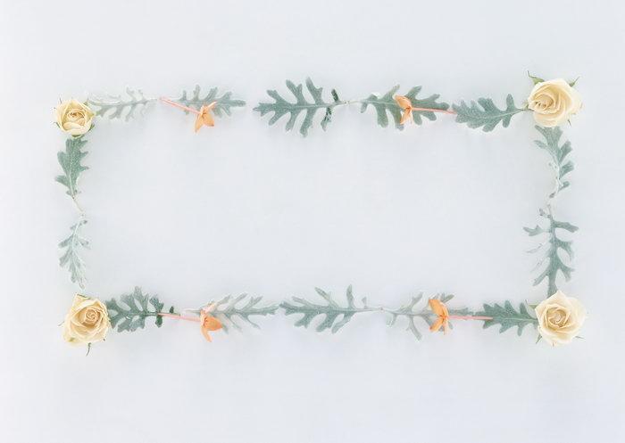 花草植物边框图片-素彩图片大全