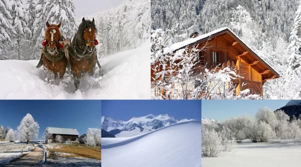 精美雪景图片,雪景,森林,马,小木屋,雪山,雪原,平雪原,图品