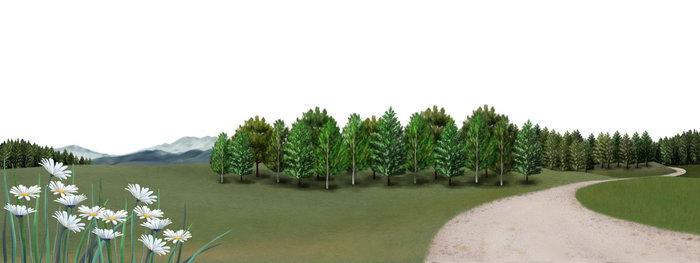 手绘森林图片-素彩图片大全
