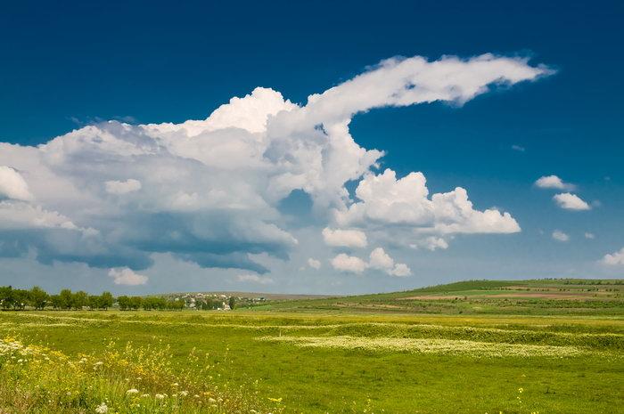 山坡绿草白云图片,山坡,绿草,白云风景自然风景,摄影,山水景观,3008x1