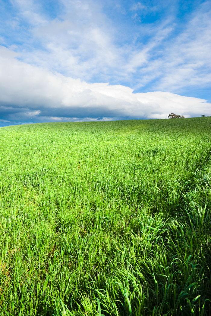 野外图片,野外,自然风景,摄影,山水景观,5000x7469像素