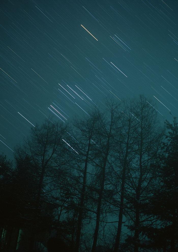 夜空树林美丽夜景图片,夜空树林,夜空夜景,天空美景,摄影,风景,2950x2