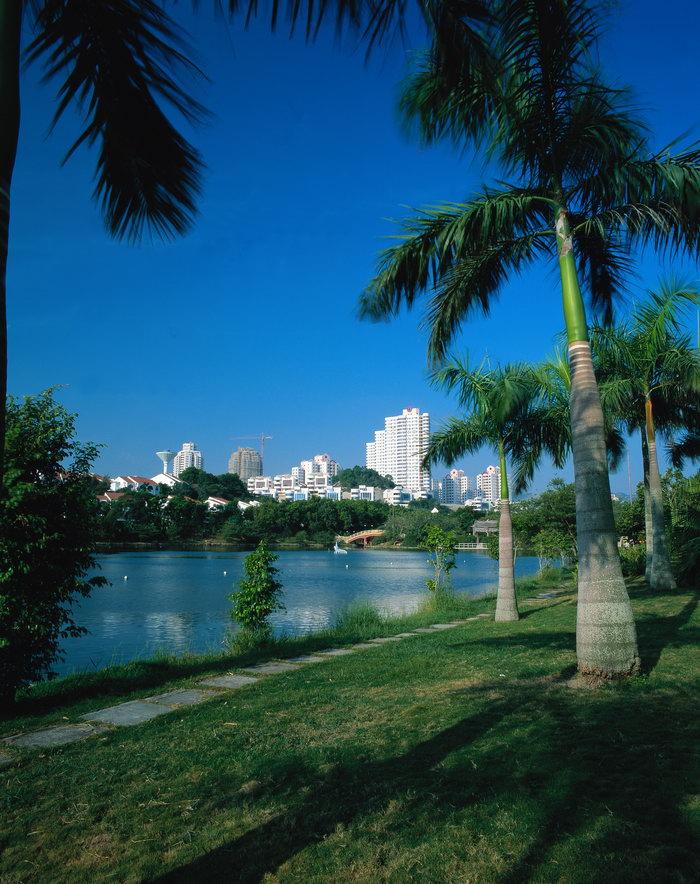 珠海城市风景图片,珠海城市风景,珠海建筑,珠海风景,珠海名胜,城市
