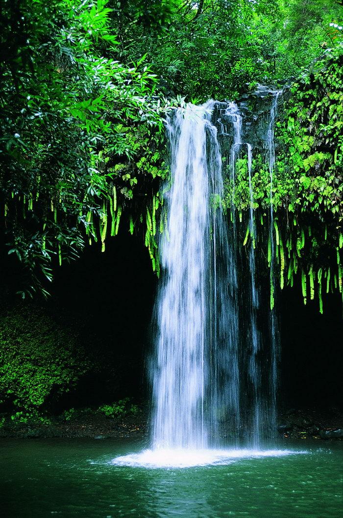 壁纸 风景 旅游 瀑布 山水 桌面 700_1055 竖版 竖屏 手机
