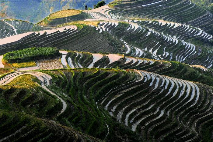 梯田图片,梯田,自然风景,摄影,山水景观设计,3872x2592像素