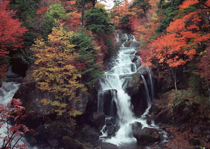 高山流水山景树林图片,高山流水,山景,树林,自然风景,摄影,山水景观