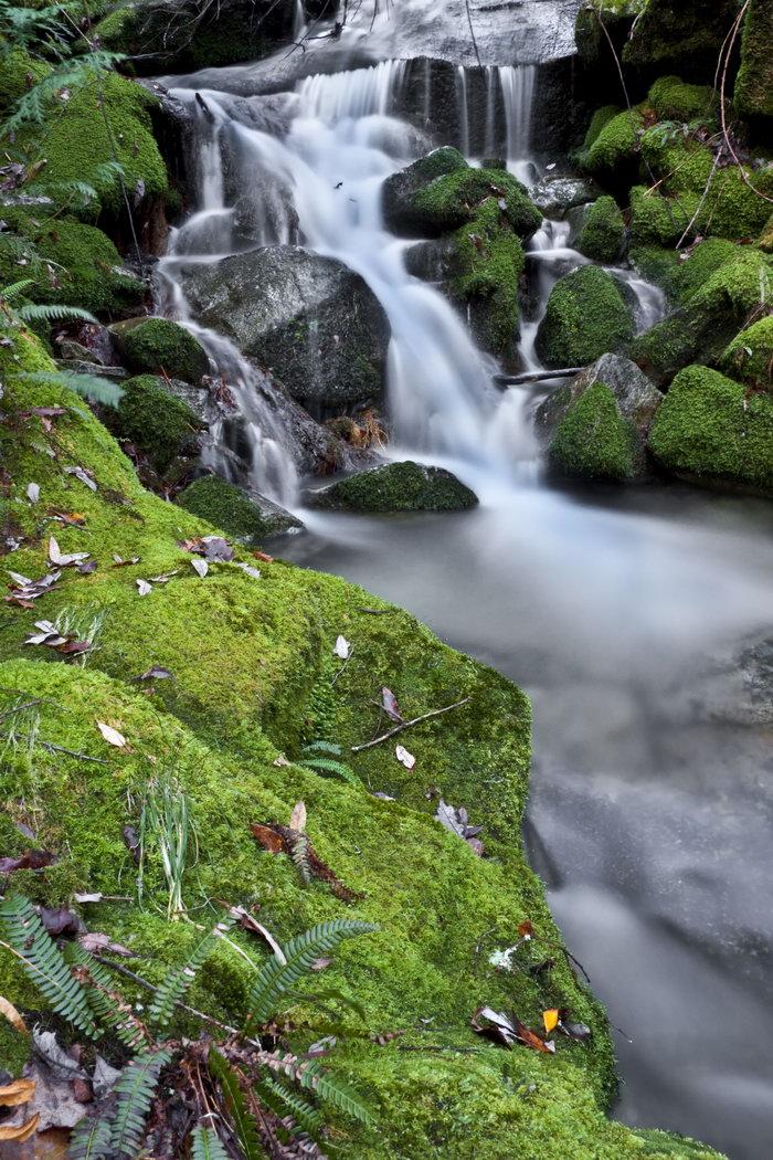 瀑布图片,瀑布,自然风景,摄影,山水景观,4666x7000像素