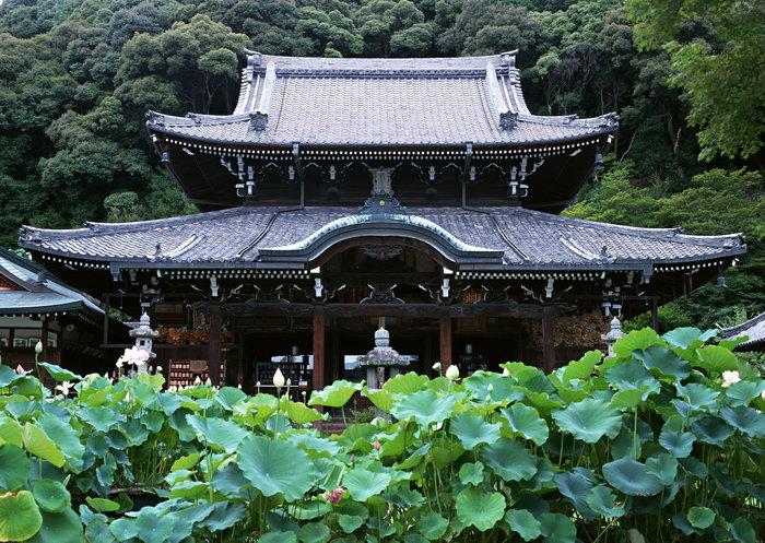 日本古建筑图片,日本古建筑日本风景,国外旅游风景,名胜景观,摄影