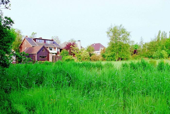 荷兰田野风景图片-素彩图片大全
