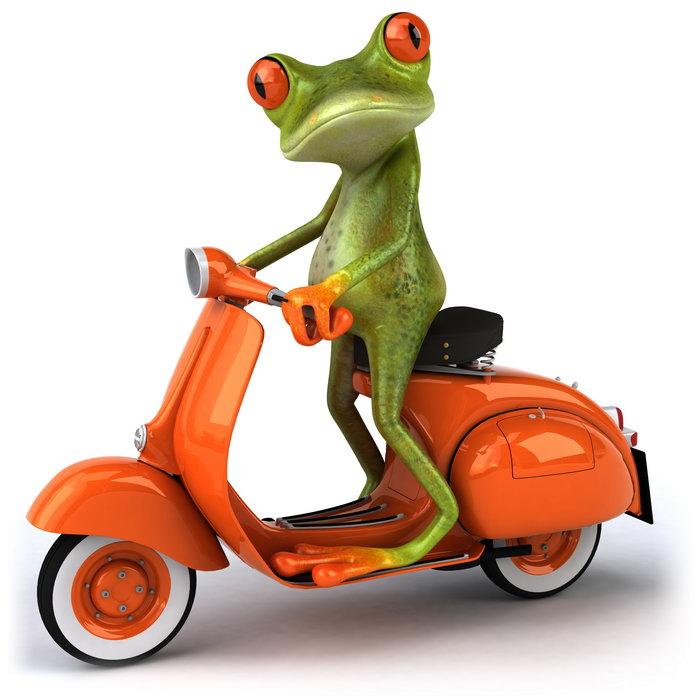 卡通青蛙骑摩托车图片,卡通青蛙骑摩托车,树蛙,创意设计,创意,摄影图片