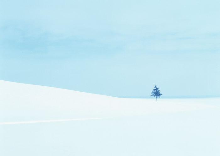 雪地图片,雪地,旅游风景,雪景,四季风景,风景,2094x2950像素