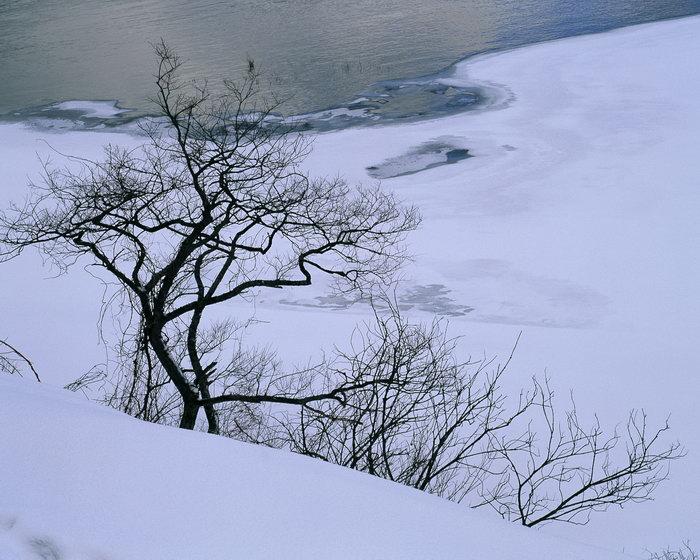 雪景图片,森林雪景,旅游风景,雪景,四季风景,风景,2500x2000像素