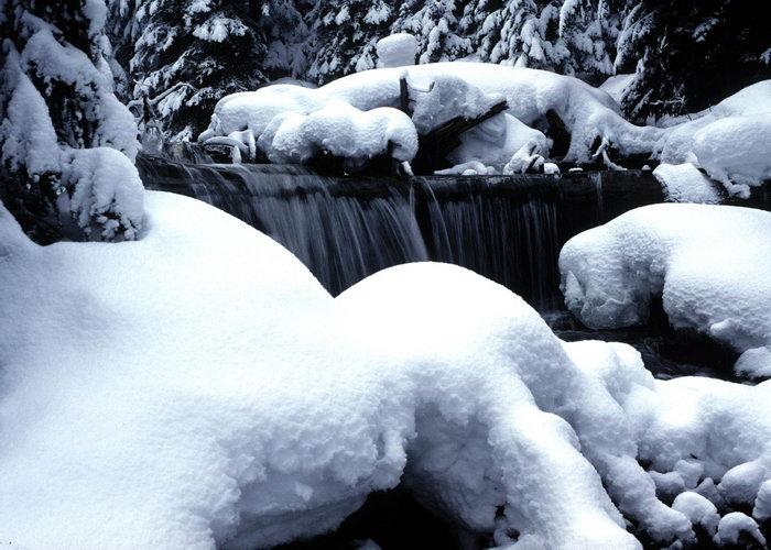 河流上的飘雪图片,河流上的飘雪,旅游风景,雪景,四季风景,风景,1680x