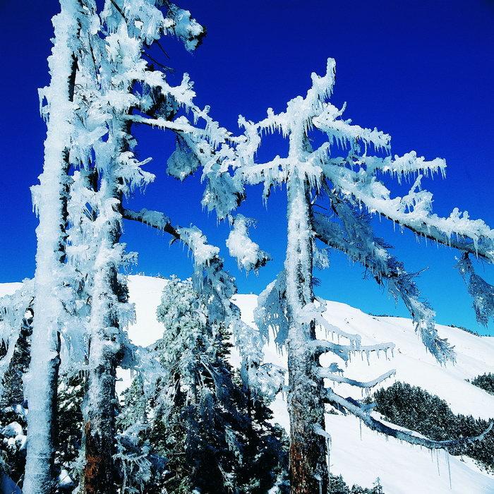 冬天美丽的风光图片,冬天美丽的风光,冬季风光,冬天风景,四季自然风景
