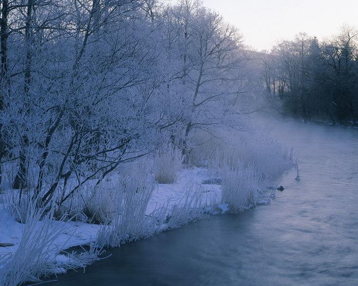 冬天雪景图片-素彩图片大全