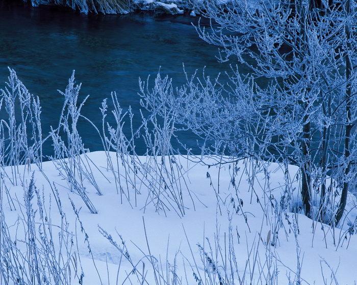 冬天雪景色图片,冬天雪景色,冬天美丽的雪景,冬天风景,四季自然风景图片