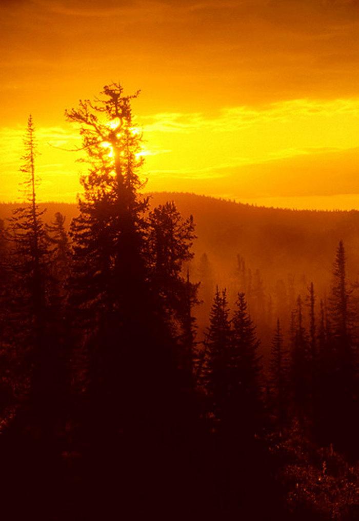 彩落日的风景画教程_背景 壁纸 风景 天空 桌面 700_1016 竖版 竖屏 手机