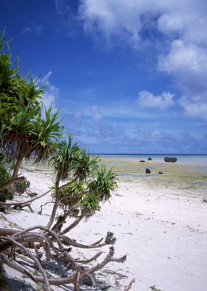 沙滩景色,旅游风光摄影图片,沙滩景色,马尔代夫旅游风景,名胜景观