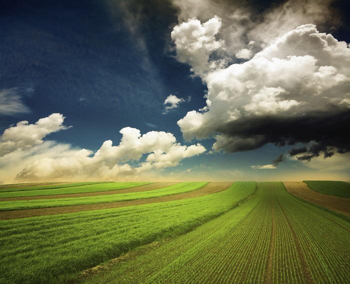 春耕田野图片,春耕田野,春天,绿色,田园风光,自然风景,摄影,3500x2835