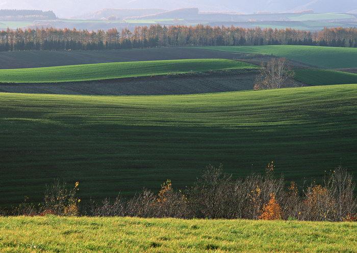 田野风光图片,田野风景,自然美景,田园风光,2950x2094像素