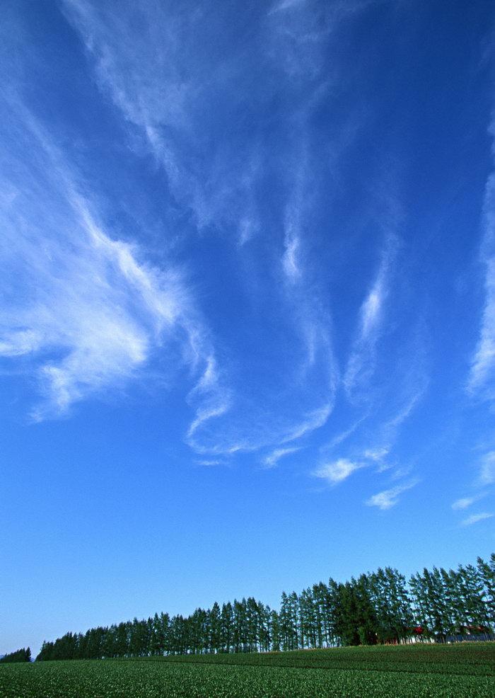 田野图片,田野,蓝天,白云,旅游风景,风景景观,摄影,自然风景,风景