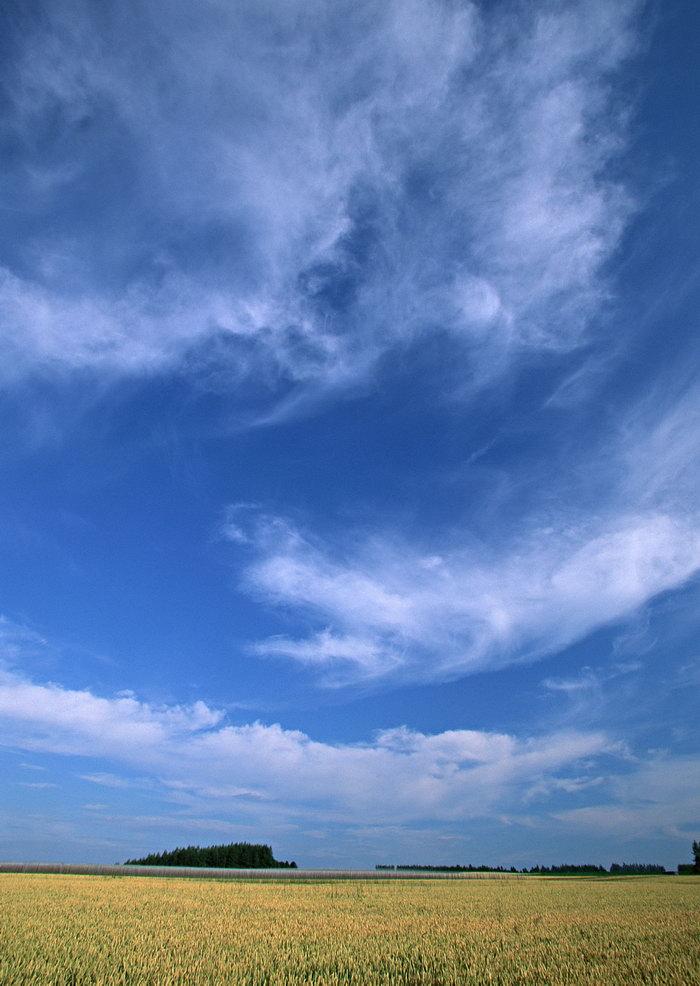 蓝天,白云,旅游风景,风景景观,摄影,自然风景,风景,3349x2299像素